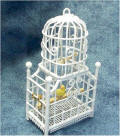 Bird in Bird Cage by Grace
