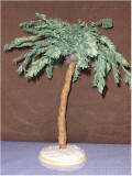 Palm tree for Gilligan's Isle by Grace