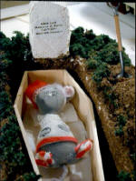 Packrat in the coffin by Grace