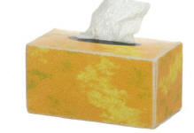 TIN1038 Gold tissue box