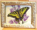 A43 Butterfly on Lilac