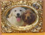 Cocker Spaniel sitting on bench with Golden in Gold Rectangular Frame
