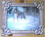 A33 Gray Fox in Silver Frame