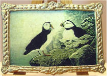 A31 Puffins in Gold Frame