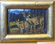 A25 White Tail Deer in Gold Frame