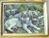 A32 Wolf Pack in Gold Frame